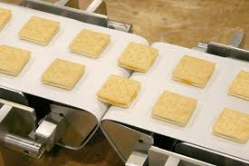 AUTOMATION IN FOOD CONVEYOR SYSTEM