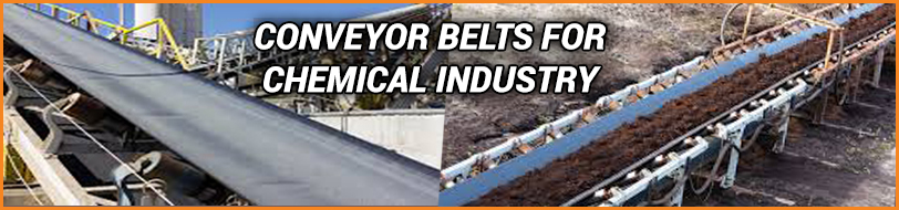 Conveyor Belt for Chemical Industry