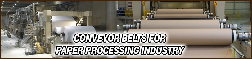 Conveyor Belts for Paper Processing