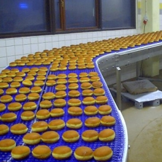 Food Conveyor Belt India