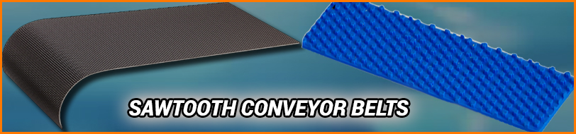 Sawtooth Conveyor Belt Exporter